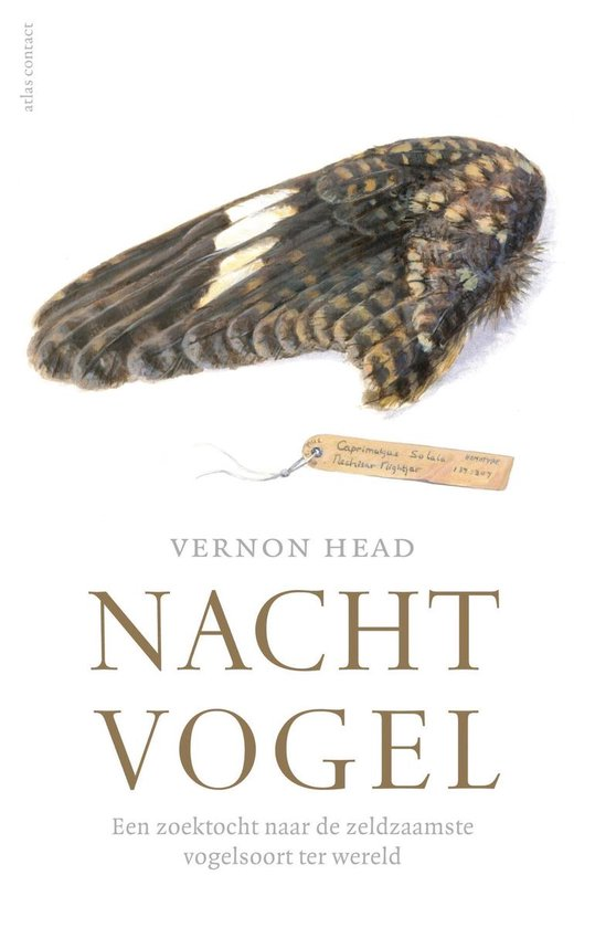 Nachtvogel - Vernon Head |