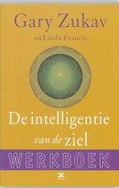 De intelligentie van de ziel ~ Werkboek
