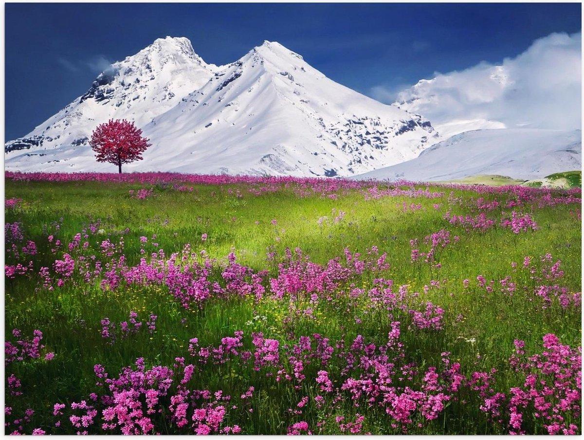 Poster   Sneeuw Bergen bij Groen Landschap - 40x30cm Foto op Posterpapier