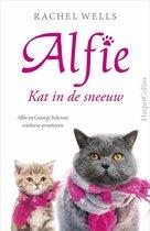 Alfie  -   Kat in de sneeuw
