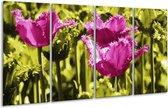 Glasschilderij Tulp | Roze, Groen, Wit | 160x80cm 4Luik | Foto print op Glas |  F003724