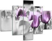 Glasschilderij Tulpen | Paars, Grijs, Wit | 100x70cm 5Luik | Foto print op Glas |  F002772