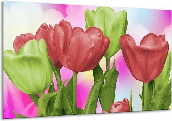 Glasschilderij Tulpen | Rood, Groen, Paars | 120x70cm 1Luik | Foto print op Glas |  F003205