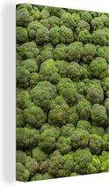 Foto vol met broccoli's Canvas 120x180 cm - Foto print op Canvas schilderij (Wanddecoratie woonkamer / slaapkamer) XXL / Groot formaat!