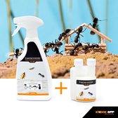 Knock Off insectenmiddel tegen mieren en andere kruipende insecten binnenshuis