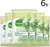 Dettol Biologisch Afbreekbare Reinigingsdoekjes (6 x 50 doekjes)