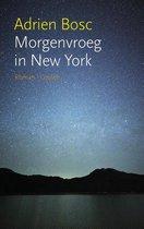 Morgenvroeg in New York