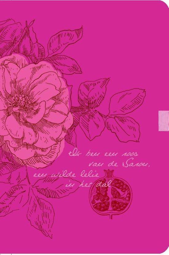 Cover van het boek 'Bijbel NBV'