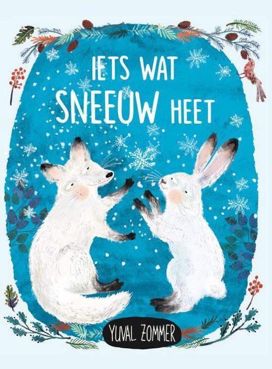 Boek cover Iets wat sneeuw heet van Yuval Zommer (Hardcover)
