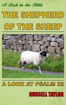Omslag The Shepherd of the Sheep