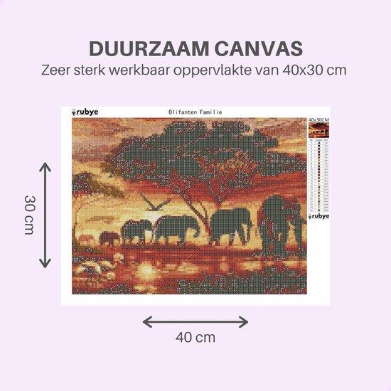 Rubye® Diamond Painting Volwassenen - Diamond Painting Kinderen - Olifanten Familie - 30x40cm