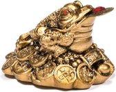 Yogi & Yogini naturals Minibeeldje Feng Shui kikker goud (5 cm)