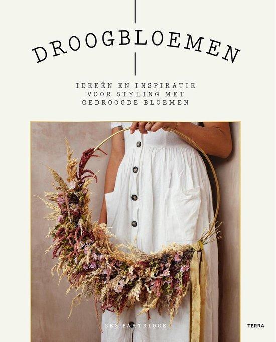 Droogbloemen - bex partridge   Fthsonline.com