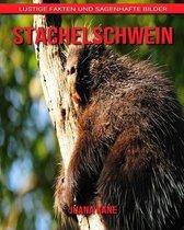 Stachelschwein: Lustige Fakten und sagenhafte Bilder