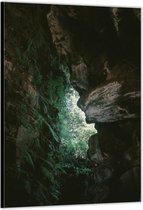 Dibond –Begroeide Rotsen in het Bos– 30x40cm Foto op Aluminium (Wanddecoratie van metaal)