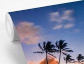 Fotobehang Hawaii -  zon gaat onr bij  rij palmbomen op Hawaii fotobehang vinyl breedte 600 cm x hoogte 400 cm - Foto print op vinyl behang (in 7 formaten beschikbaar) - slaapkamer/woonkamer/kantoor