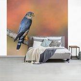 Fotobehang vinyl - Smelleken bevindt zich in een herfstlandschap breedte 265 cm x hoogte 240 cm - Foto print op behang (in 7 formaten beschikbaar)