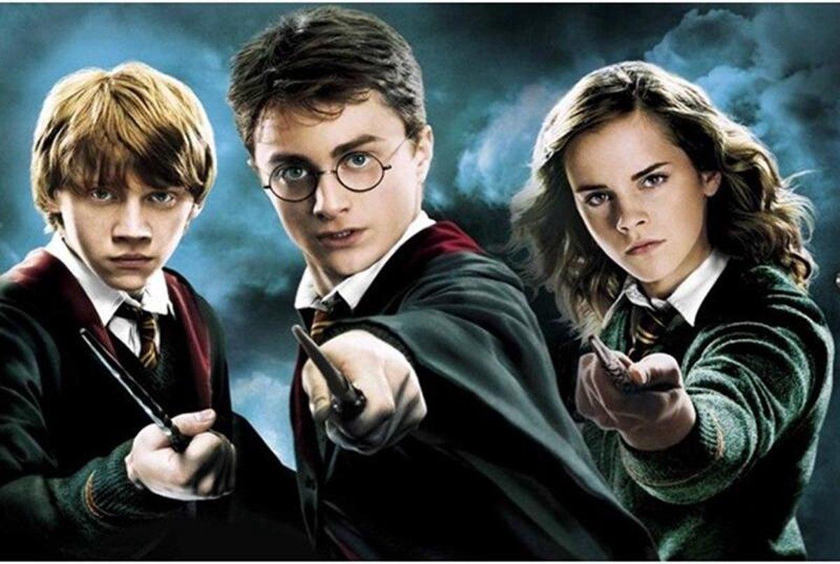 Premium Paintings - Harry Potter, Hermelien en Ron - Diamond Painting Volwassenen - Pakket Volledig / Pakket Full - 30x40 - Moederdag cadeautje