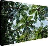 Bomen en bladeren in jungle Canvas 180x120 cm - Foto print op Canvas schilderij (Wanddecoratie woonkamer / slaapkamer) XXL / Groot formaat!