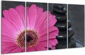 Glasschilderij Bloem   Rood, Grijs, Zwart   160x80cm 4Luik   Foto print op Glas    F001230