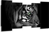 Canvas schilderij Tijger | Wit, Zwart, Grijs | 150x80cm 5Luik