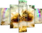 Glasschilderij Lelie   Bruin, Grijs   100x70cm 5Luik   Foto print op Glas    F005870