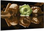 Canvas schilderij Roos   Groen, Bruin   120x70cm 1Luik