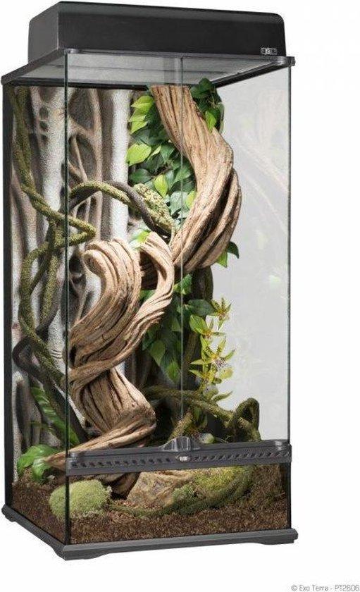 Exo Terra Rainforest - Terrarium - S X-Tal Paludarium - 45 x 45 x 90cm