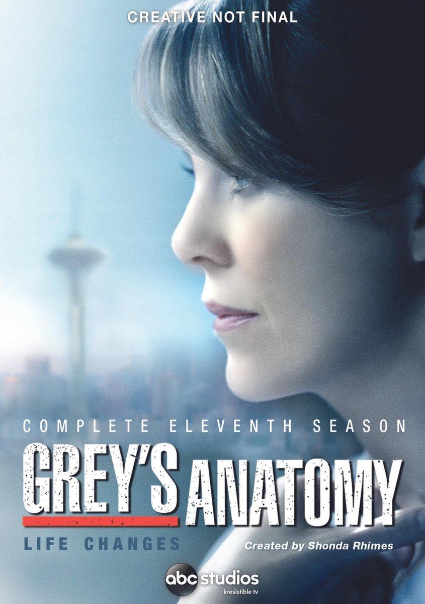 Grey's Anatomy - Seizoen 11 - Tv Series