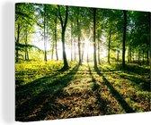 Canvas Schilderijen - Doorbrekende zon in de bossen van het Nationaal park Söderåsen in Zweden - 60x40 cm - Wanddecoratie
