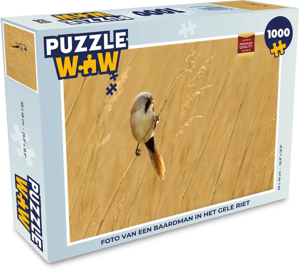 Puzzel 1000 stukjes volwassenen Baardman 1000 stukjes - Foto van een baardman in het gele riet  - PuzzleWow heeft +100000 puzzels