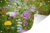 Tuinposter Weidebloemen - Bloemen van nabij weergeven 120x80 cm - Tuindoek/Buitencanvas/Schilderijen voor buiten (tuin decoratie)