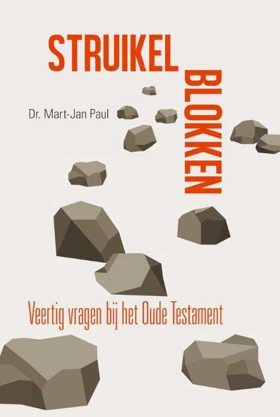 Struikelblokken - Dr. M.J. Paul  