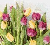 MyHobby Borduurpakket –  Tulpen 30×30 cm - Aida stof 5,5 kruisjes/cm (14 count)