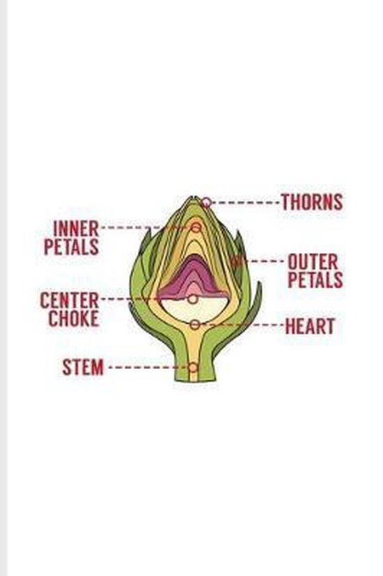 Thorns Inner Petals Outer Petals Center Choke Heart Stem