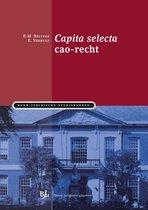 Boom Juridische studieboeken  -   Capita selecta cao-recht