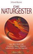 Die Naturgeister: Aus dem Reich der Gnomen, Nixen, Sylphen, Salamander und Sturmgeister