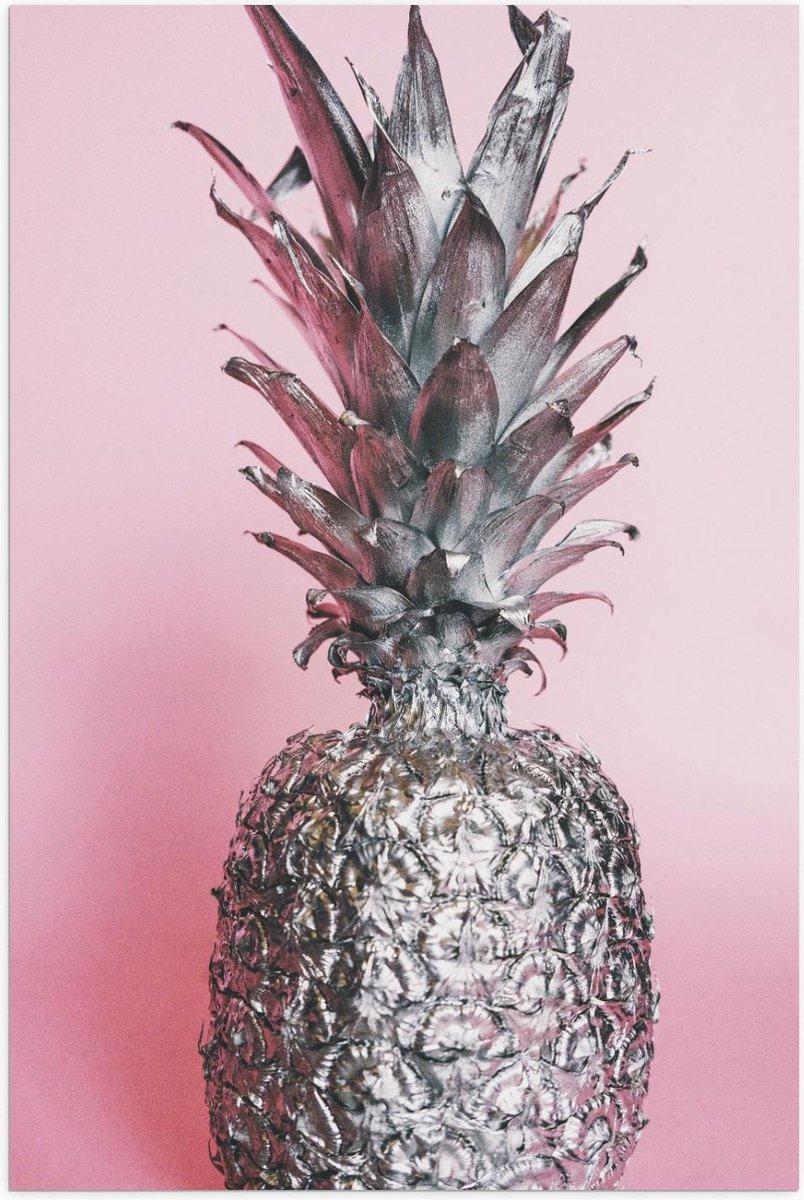 Poster   Zilveren Ananas  met Roze Achtergrond - 80x120cm Foto op Posterpapier
