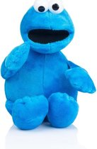 Koekiemonster Sesamstraat pluche knuffel 17 cm speelgoed - Sesamstraat figuren cartoon knuffels voor kinderen