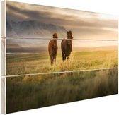 IJslandse paarden in het veld Hout 30x20 cm - klein - Foto print op Hout (Wanddecoratie)