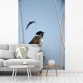 Vogel die een tak van het riet neerstrijkt fotobehang vinyl 180x270 cm - Foto print op behang