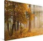 Herfstbladeren in de Verenigde Staten met de herfstzon Canvas 60x40 cm - Foto print op Canvas schilderij (Wanddecoratie woonkamer / slaapkamer)