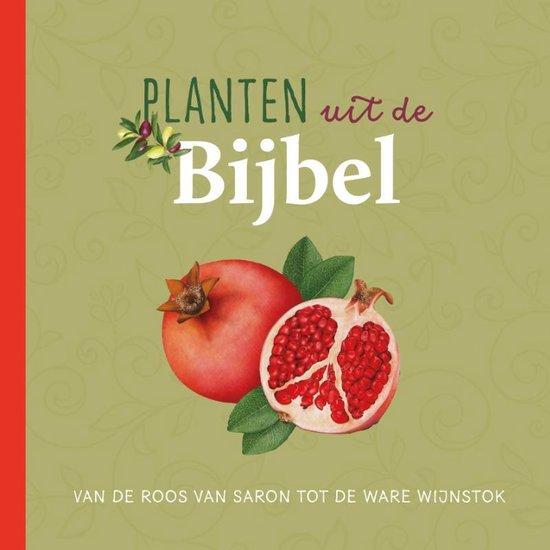 Planten uit de Bijbel - Judith Dinsmore |