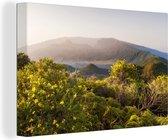 Wilde bloemen in het Nationaal park Caldera de Taburiente in Spanje Canvas 60x40 cm - Foto print op Canvas schilderij (Wanddecoratie woonkamer / slaapkamer)