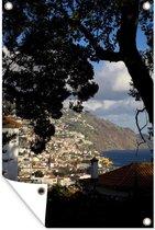 Tuinposter - Een boom langs de kust van Funchal in Madeira - 80x120 cm