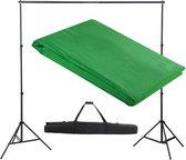 vidaXL Achtergrondondersteuningssysteem 300x300 cm groen