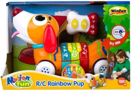 WinFun RC Leer en Speel Regenboog Pup + Geluid