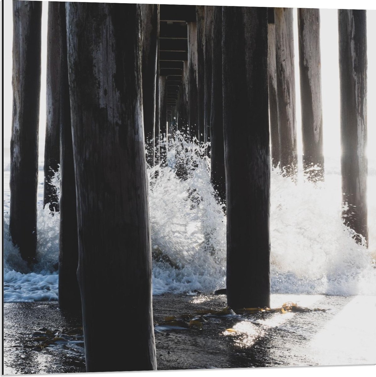 Dibond - Palen van een Pier in het Water  - 80x80cm Foto op Aluminium (Met Ophangsysteem)