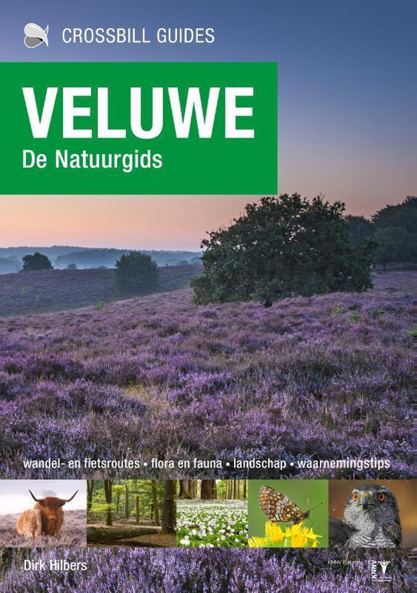 Crossbill guides - Veluwe - Dirk Hilbers