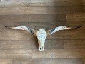 Longhoorn gegraveerd echt